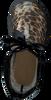 IGOR Bottes en caoutchouc BIMBI LEO en marron  - small