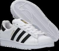 ADIDAS Baskets basses SUPERSTAR J en blanc  - medium
