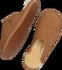 WARMBAT Chaussure CLASSIC UNISEX SUEDE en cognac  - small